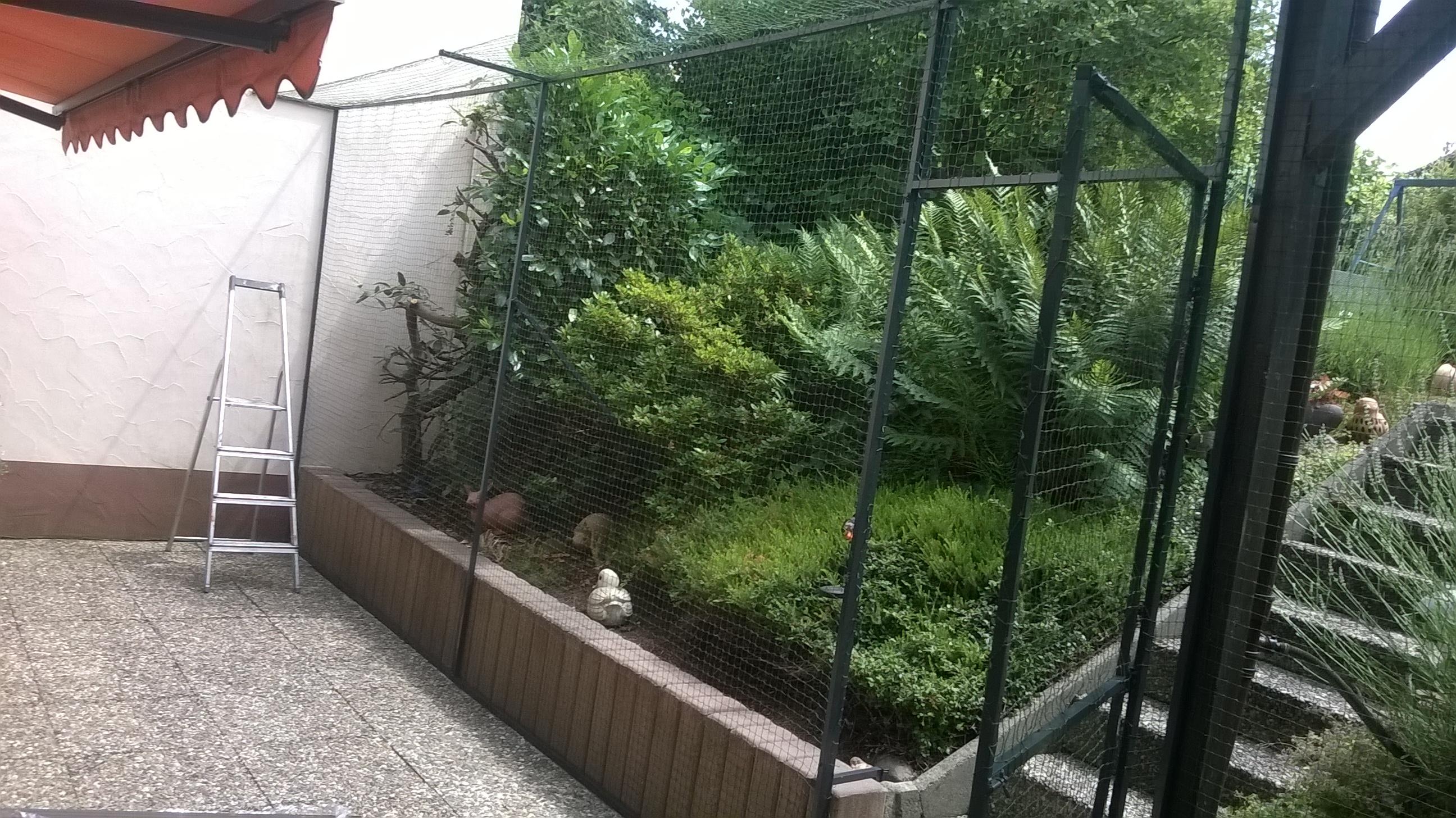 gartenterrasse in hanau bei frankfurt katzensicher vernetzt katzennetze nrw der katzennetz. Black Bedroom Furniture Sets. Home Design Ideas