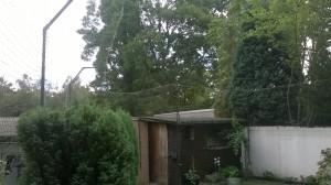Garten umlaufend katzensicher vernetzt