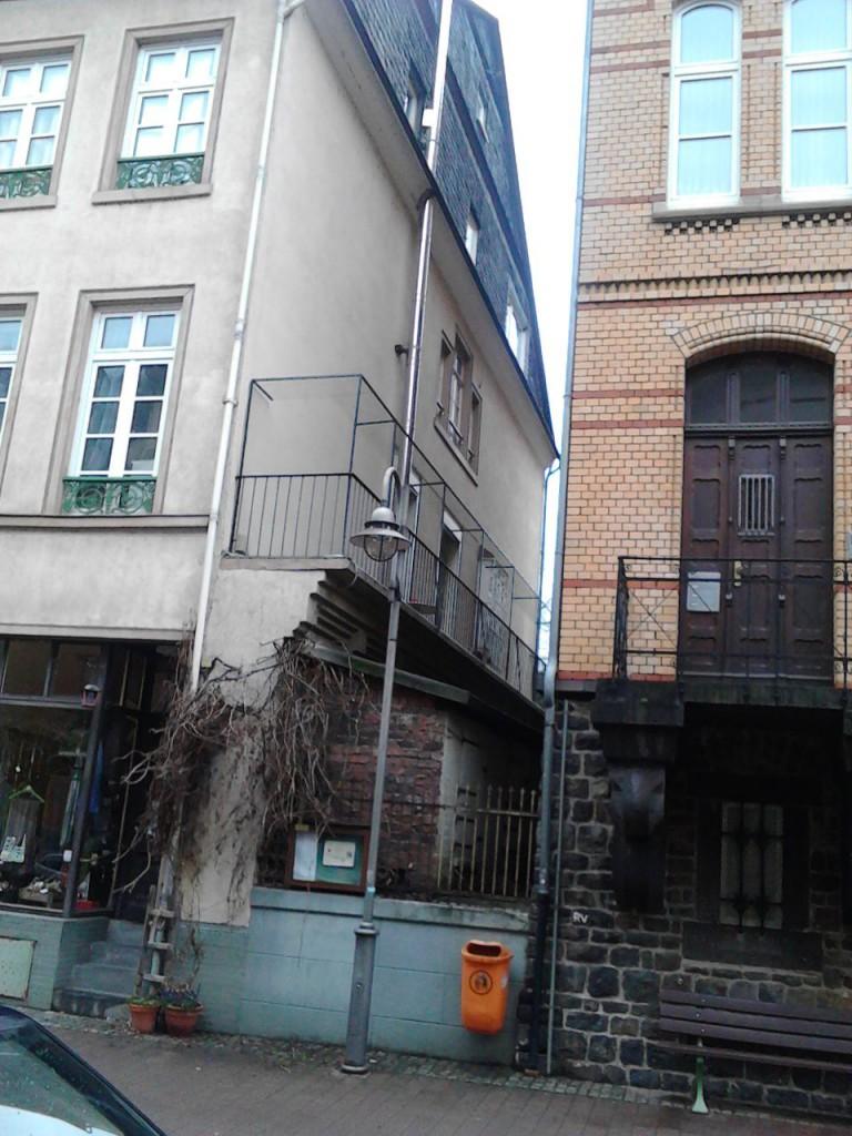 Katzennetz_Rheinland-Pfalz