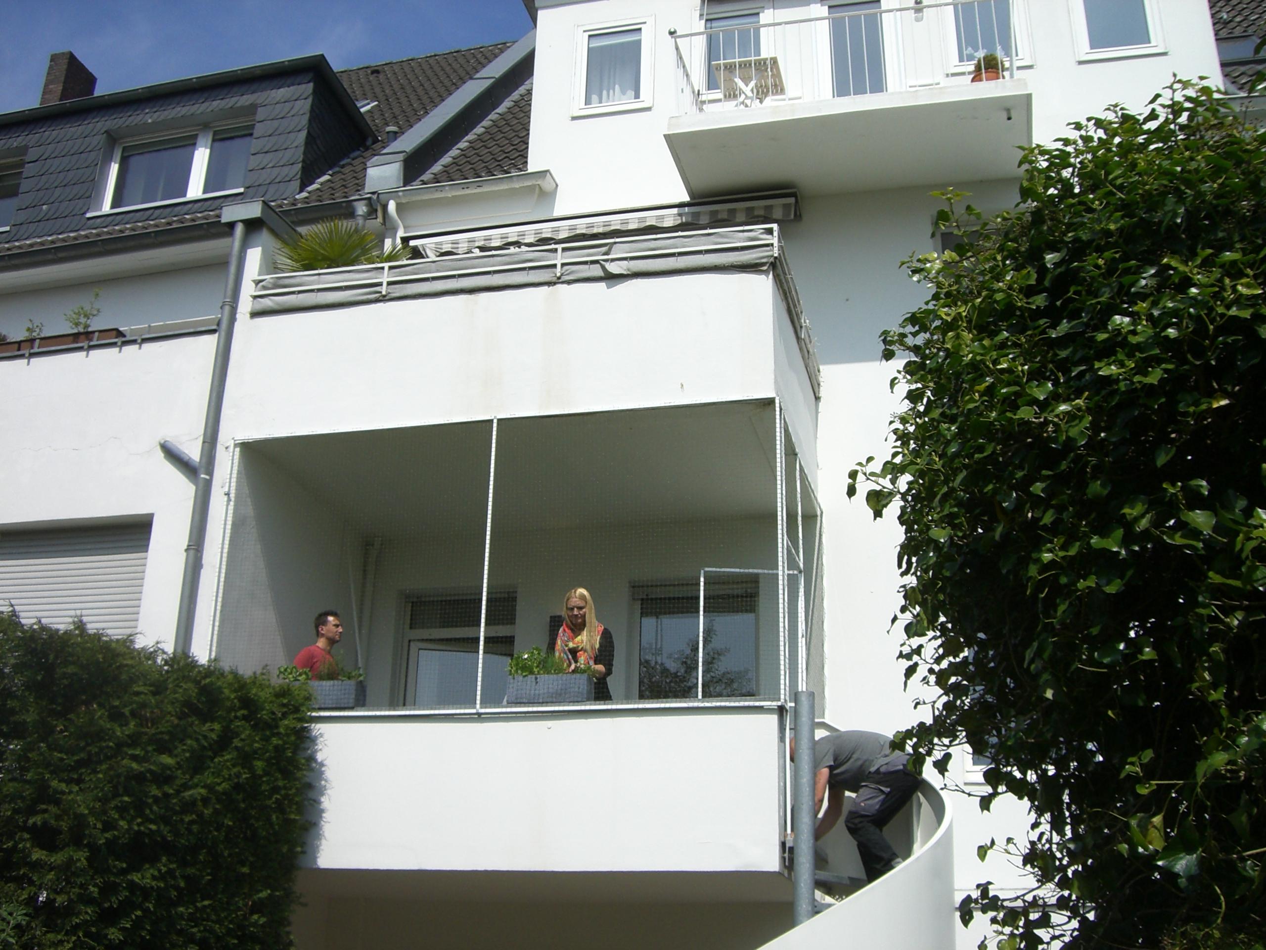 Balkonvernetzung Balkonnetz Fur Katzen Katzennetze Fur Balkon