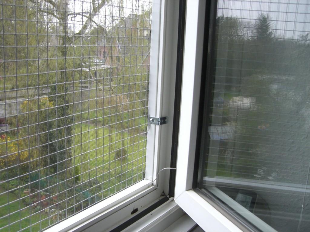 Ohne bohren Fensterschutz Katze