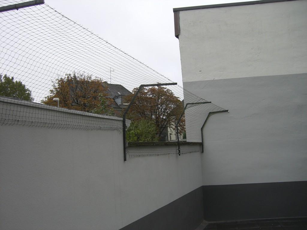 katzennetz Mauer