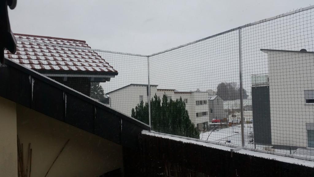 Dachloggia-Katzennetz-Karlsruhe