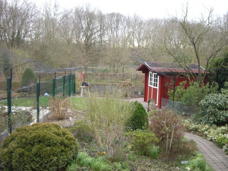 Garten als Katzenfreilauf