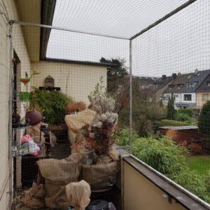 Katzennetz Balkon Katzennetz Profi