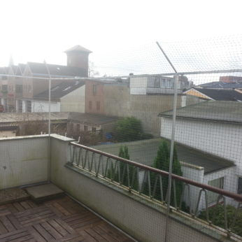 Katzennetz am Balkon in Elmshorn