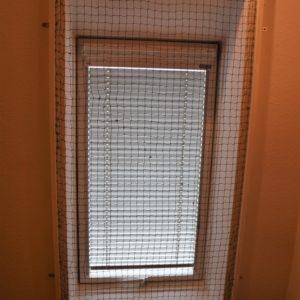 Dachfenster Katzenschutz