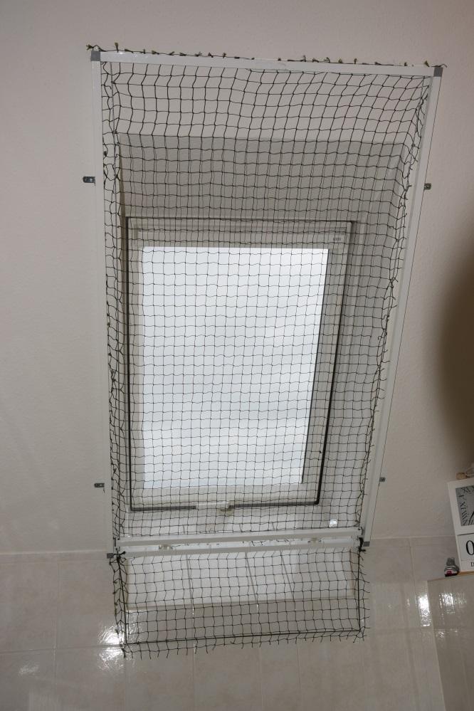 Dachfenster Und Balkonsicherung Wohnung Katzensicher Machen