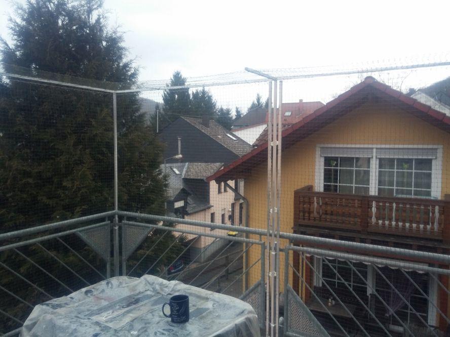 katzennetz katzennetz ohne bohren katzennetz balkon. Black Bedroom Furniture Sets. Home Design Ideas