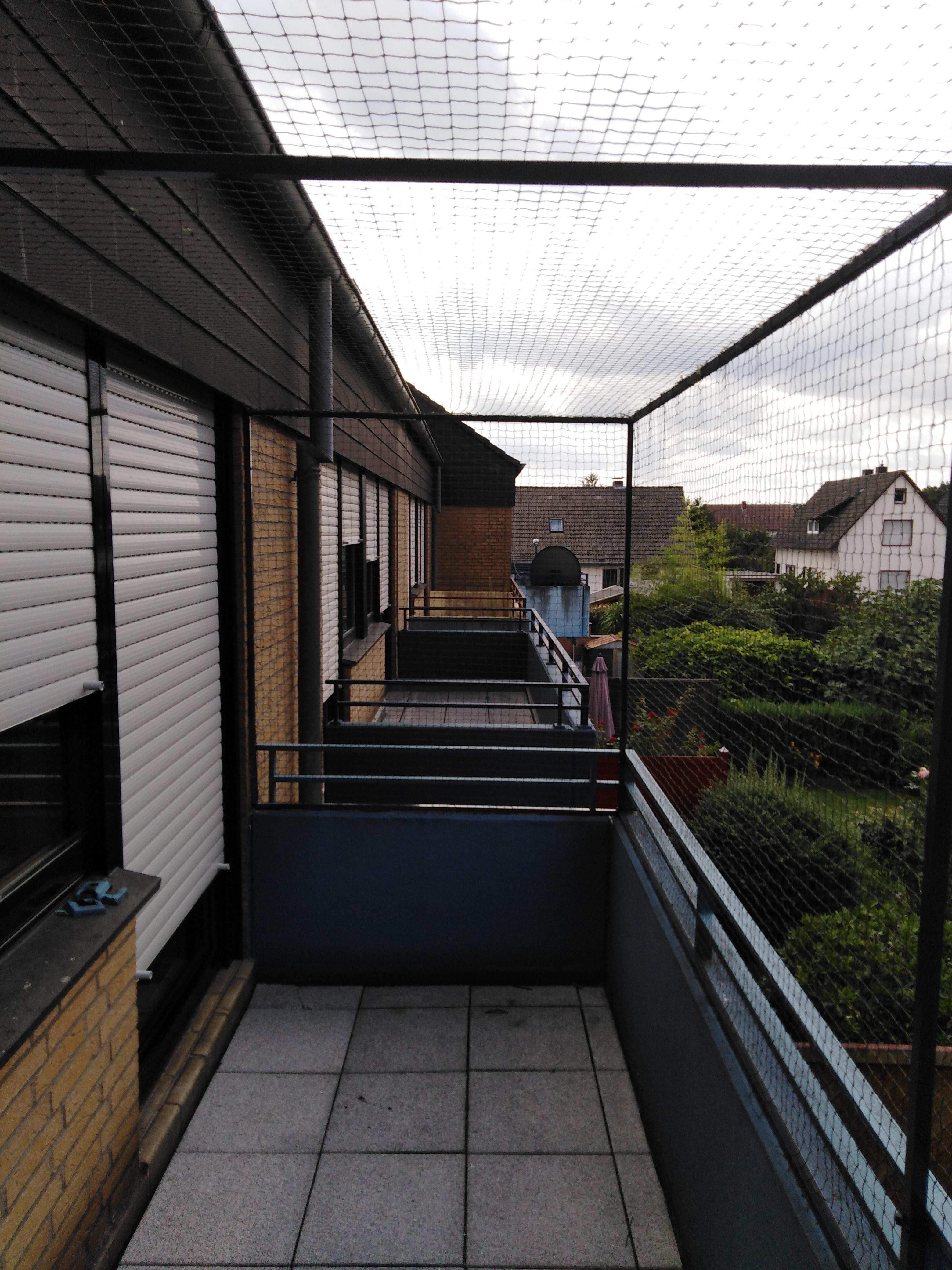 katzennetze f r garten terassen balkone katzennetze nrw der katzennetz profi. Black Bedroom Furniture Sets. Home Design Ideas