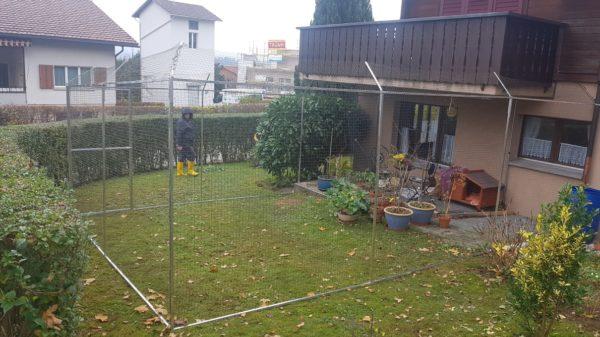Katzennetz in Garten als Katzengehege_Schweiz