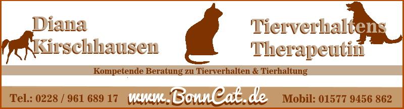 Bonncat Katzentherapie
